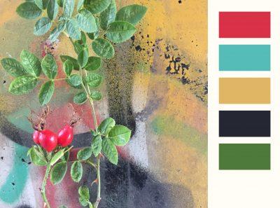 kleurenkaart_04