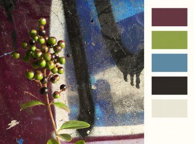 kleurenkaart_05