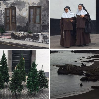 nuns and christmas trees